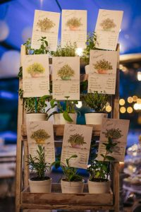 seating chart botanical cards drawings plants wedding